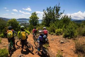 Ruta del Roble Bicicletas