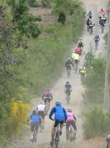 bicicleta-grupo-1